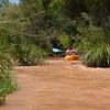 Verde River Institute Float Trip, Tapco to Tuzi, 7/27/18