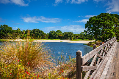Indian River Club Stock - 24