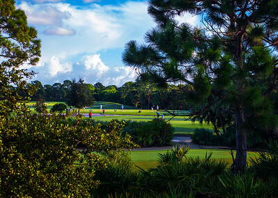 Indian River Club Stock - 17