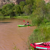 Verde River Institute Float Trip, Tapco to Tuzi, 8/26/17