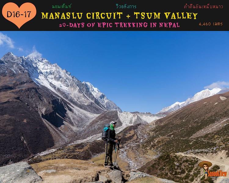 20 วัน เทรคกิ้ง Manaslu Circuit & Tsum Valley เนปาล จาก Samagaon (sama) ไป Dharmasala