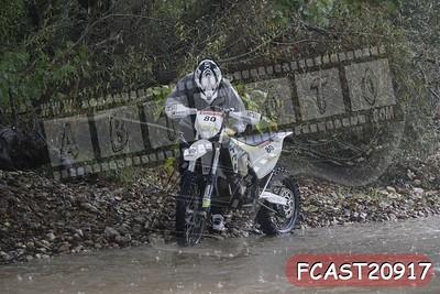 FCAST20917