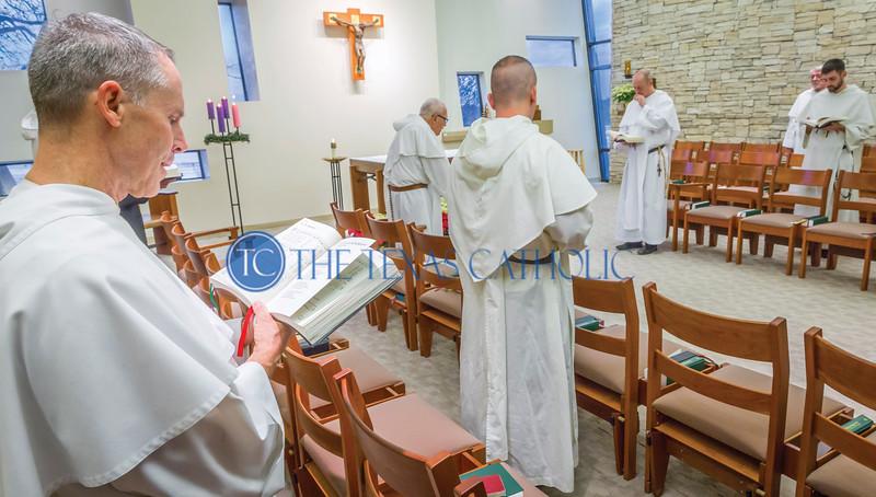 800th Dominican Anniversary
