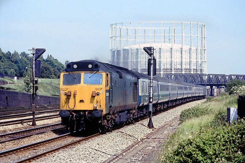 13th Jul 81:  50008 'Resolution' heads the 15.00 Paddington to Hereford via Oxford.  Pictured from the old Mitre Way