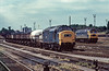 27th Jul 1981:  37251 & 47265 in Acton Yard