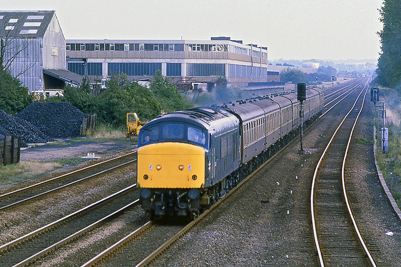 10th Aug 1981:    46051 on the 16.50 to Harrogate from Kings Cross at the site of Three Counties Station.   Lineside coal heaps are a thing of the past.