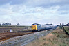 28th Nov 81: 55016 races west near Milley Bridge working the Devonian tour from Finsbury Park to Exeter