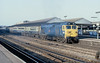 1st Jan 81:  50033  pauses at Reading while working the 08.15 from Cardiff