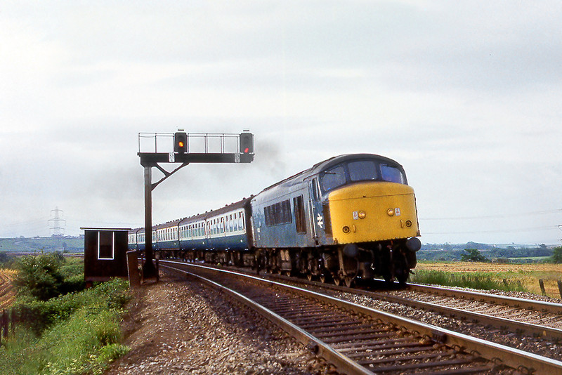 6th Jun 81:  45033 on the 07.00 Bristol Temple Meads to Derby is seen jusst north of Westerleigh Junction