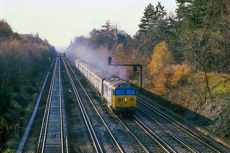 5th Nov 1981:  On a cold Bonfire Night day 50038 'Formidable'  is heading up the straight at Pirbright with the 09.10 from Exeter to Waterloo