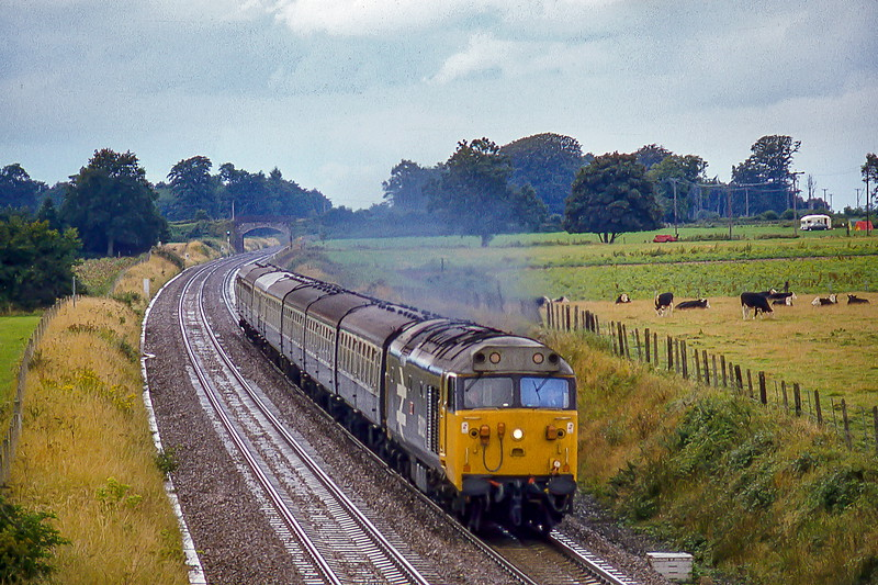 26th Aug 1982:  During a brief rain shower 50021 'Rodney' pounds through Manniingford with the 10.45 from. Penzance to Paddington,