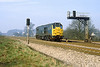 26th Mar 82:  31236 on the Up Main at Ruscombe