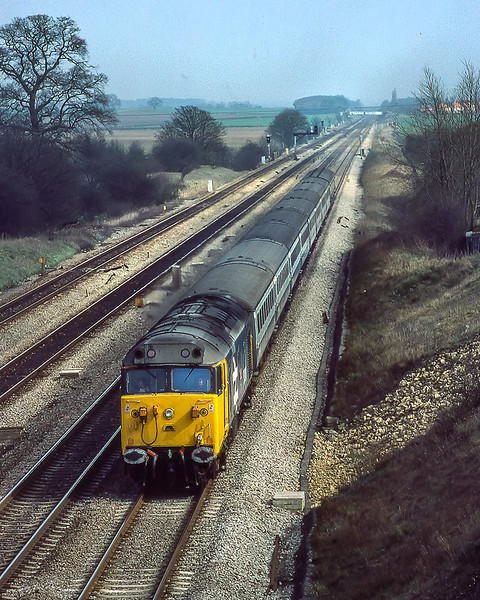 18th Mar 1983:    Hauling a Cheltenham Race day special through Ruscombe is 50040 'Leviathan'.