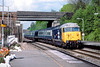 18th May 83:  Belting through Twyford is 50011 Centurian on the 17.10 Paddington to Oxford