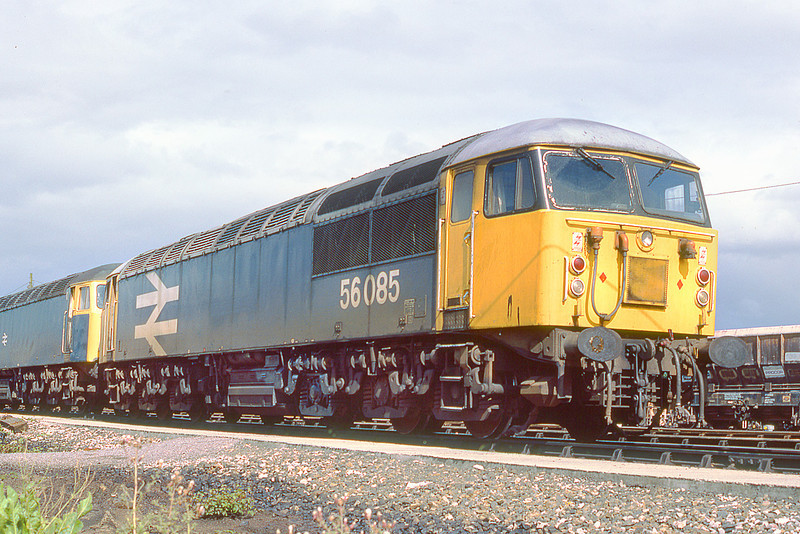 25th May 85:   56085 rests on Westbury stabling point
