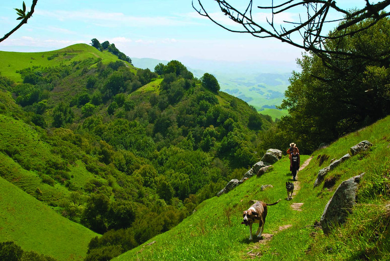 Now: Las Trampas is a park for energetic hikers. Wildlife is abundant and there are spectacular views.