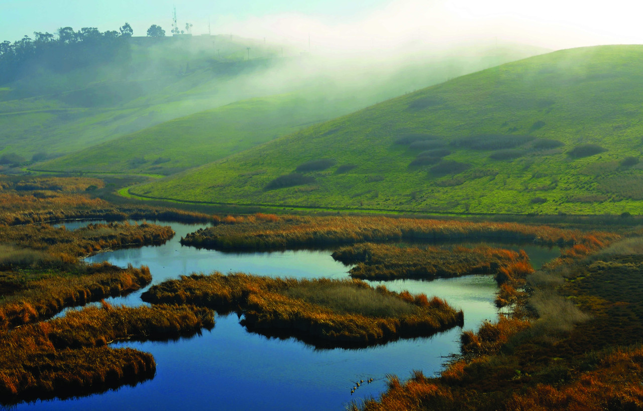 Today: Coyote Hills Regional Park offers trails and a visitor center. Sharing the history and cultural heritage of Ohlone peoples past to present is a major emphasis of the park's educational programs.