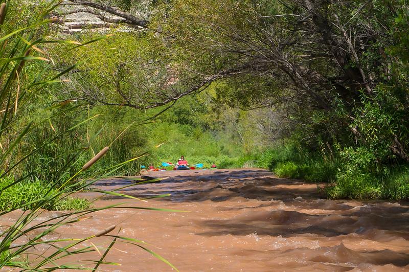 Verde River Institute Float Trip, Tapco to Tuzi, 8/16/17