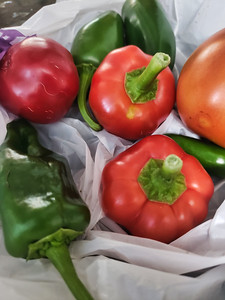 Red, Green and Orange hot peppers - ghost pepper.