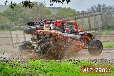 ALF 79016