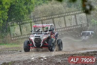 ALF 79063