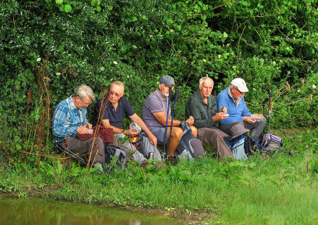 Gentlemens' corner at feeding time