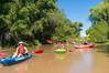 Verde River Fami Trip, Clear Ck to Beasley Flat, 8/31/16