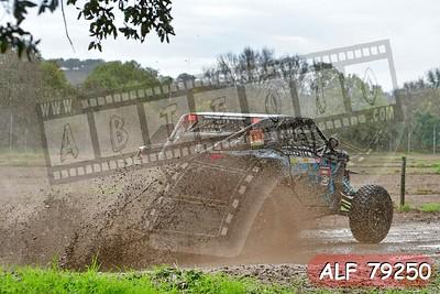 ALF 79250