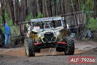 ALF 79266