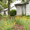5 acres and house Frenchtown, ArgyleTX, Polly HErshey