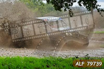 ALF 79739
