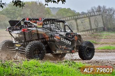 ALF 79801
