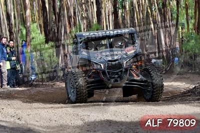 ALF 79809