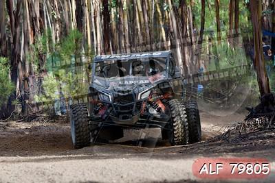 ALF 79805