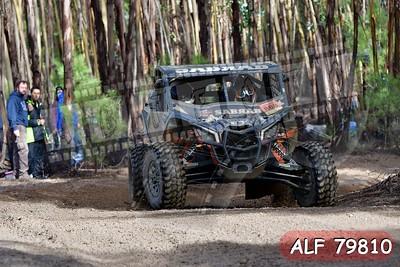 ALF 79810