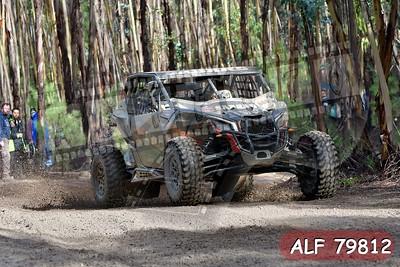 ALF 79812