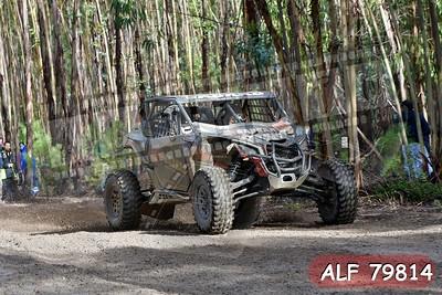 ALF 79814