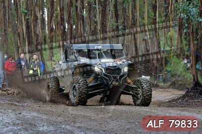 ALF 79833