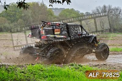 ALF 79825