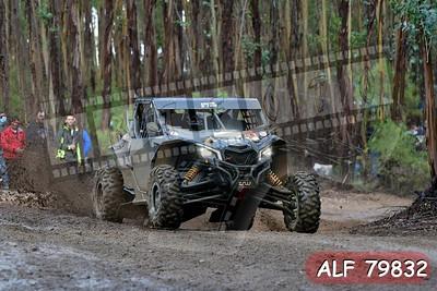 ALF 79832