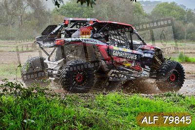 ALF 79845