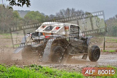 ALF 80015