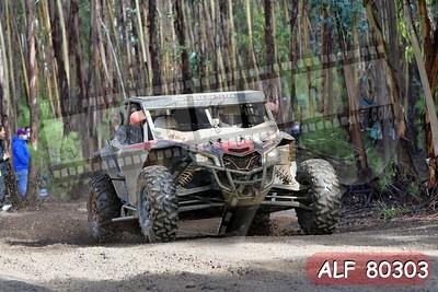 ALF 80303