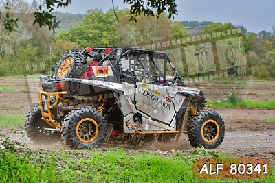 ALF 80341