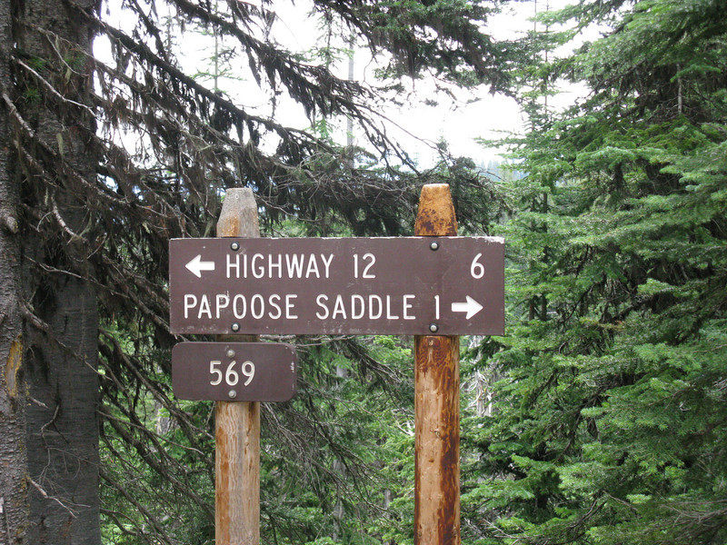 Today there are probably hundreds of crossroads and side trails on the Lolo Trail.  The entire route of the Lolo Trail is approximately 122 miles.  The  Papoose Saddle road intersection provides an exit back to the main Highway 12.