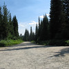 Lolo Trail at an unmarked crossroad. Taking the Lolo Trail without a detail forest service map would not be advisable.