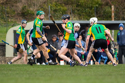 Sunday, March 08 2020 FBD Insurance Tipperary County Hurling League Nenagh Eire Og 1-14(17) Kilruane MacDonaghs 1-13(16)