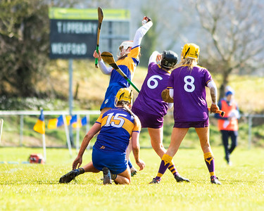 Sunday, March 08 2020 Tesco Ireland All Ireland Minor A Camogie Championship Tipperary 1-9(12) Wexford 0-4(4)