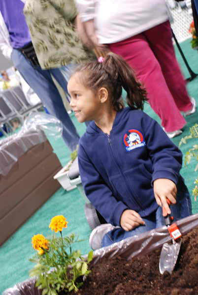 Carolina Jimenez, 5, plants marigolds at Camp Dianoigo. EH