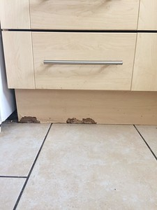 Peeling / rotting skirting board in kitchen